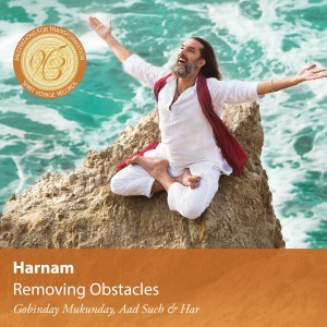 harnam_removing_obstacles_cover_3000x3000